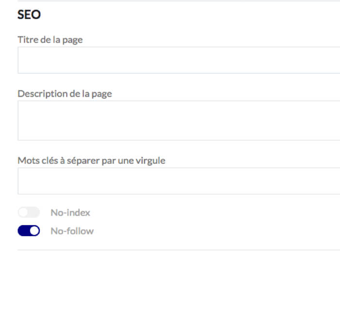 SEO d'un article
